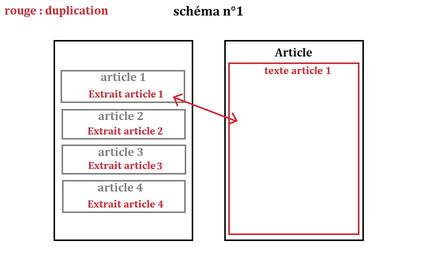 duplication schema n1