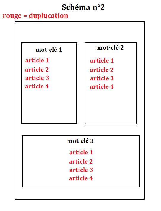 duplication schema n2